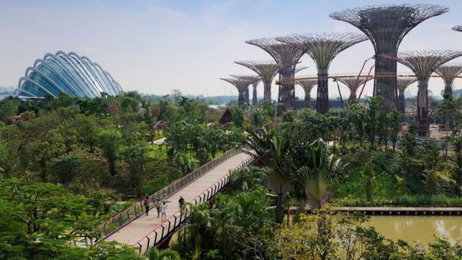 garden by the bay percutian bajet menarik di singapore