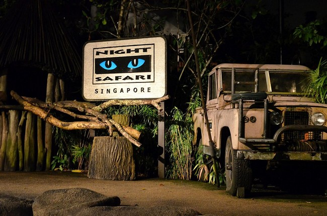 nighty safari singapore