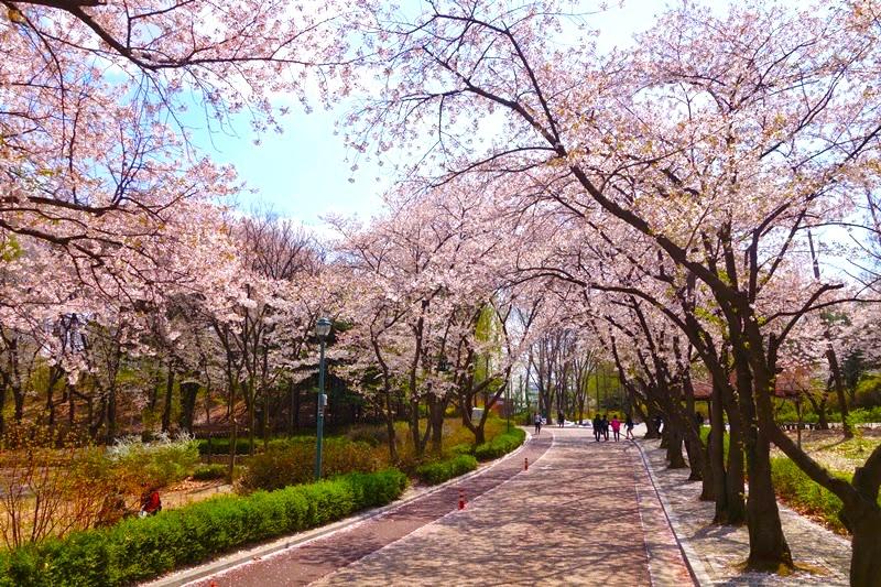 tempat menarik di korea